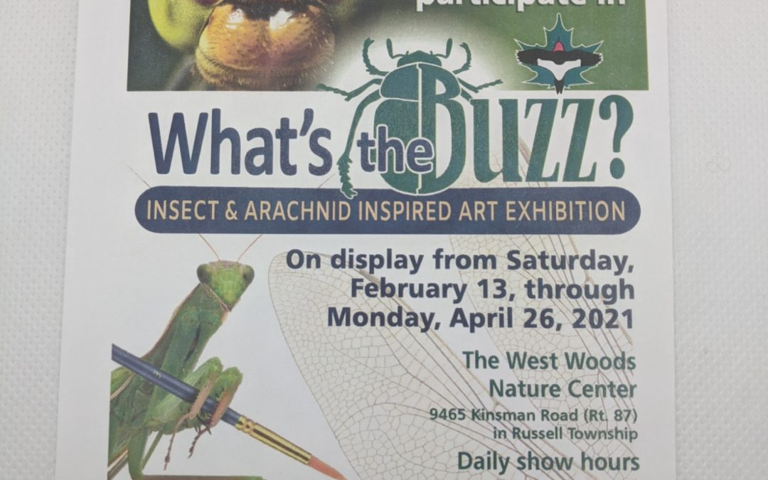What's the Buzz? Insect Inspired Art Exhibit
